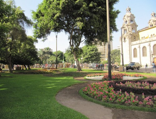 Parque Kennedy | Parque Central Miraflores
