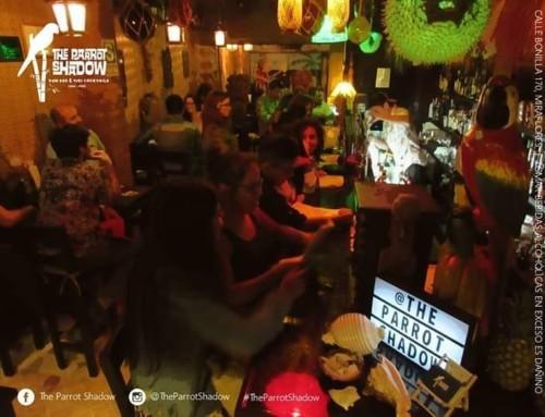 The Parrot Shadow   Bar Miraflores